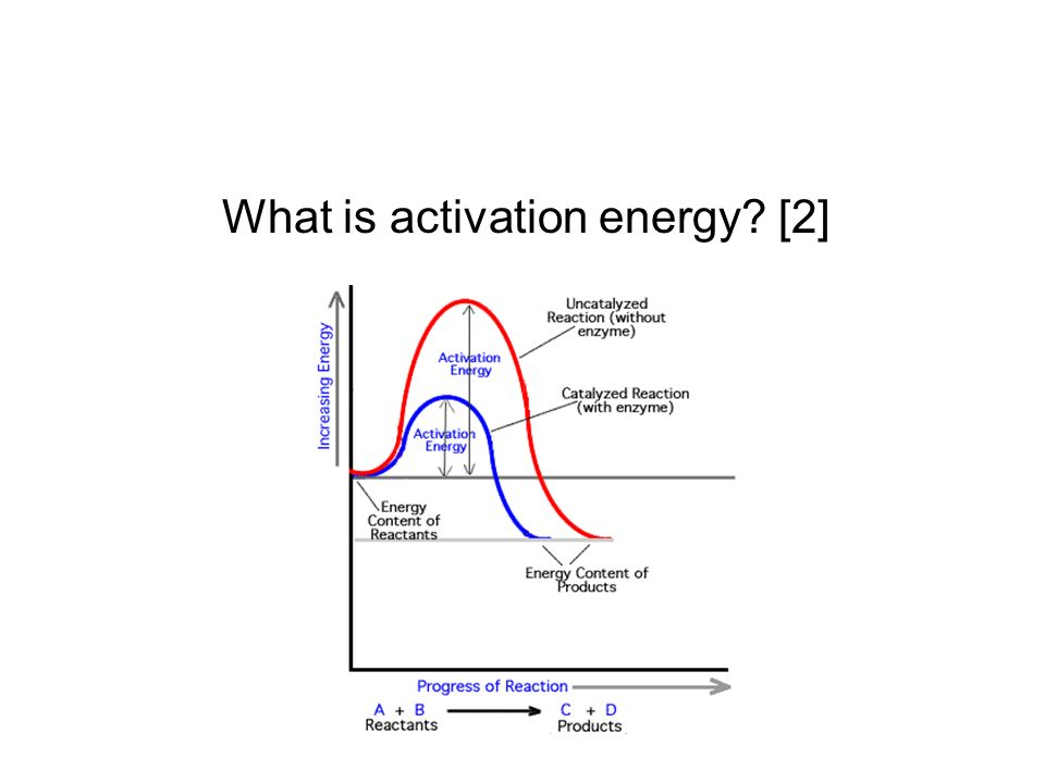 What is activation energy [2]
